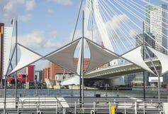 View to Rotterdam city harbour, future architecture concept, bright landscape Stock Photo