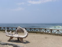 View to the sea from Pulpos beach of Lima Royalty Free Stock Photography