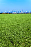 View to skyline of Frankfurt Royalty Free Stock Photo