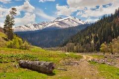 View to snow on Caucasus mountains near Arkhyz. View to the foothills of the Caucasus mountains over log and road near Arkhyz, Karachay-Cherkessia, Russia Stock Photo