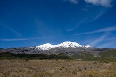 View to the snow covered volcano Ruapehu. With alpine meadows foreground Stock Image