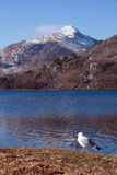 View to Snowdon Royalty Free Stock Photo