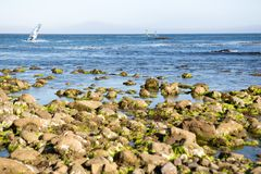 Surfers in Los Angeles area. A view to the surfers in Malibu, California, USA Stock Photos