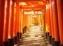View to Torii gates in Fushimi Inari Shrine. Famous place in Kyoto, Japan Stock Photo