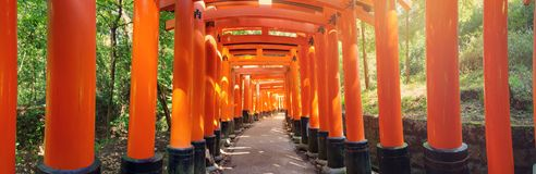 View to Torii gates in Fushimi Inari Shrine. Famous place in Kyoto, Japan Royalty Free Stock Image