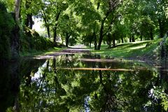 View to trees of park near Milan Triennale Museum in summer. Royalty Free Stock Image