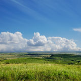 View to vineyard. Ukraine, Trans-carpathian Royalty Free Stock Image