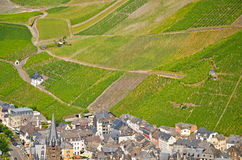 View to the vineyards near Bernkastel-Kues and river Moselle, Germany Stock Photography