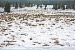 View to winter landsape at north Bohemia. Krusne Hory, Bublava, Rolava Stock Images