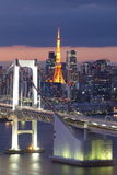 View of Tokyo Bay Royalty Free Stock Images