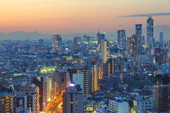 View of tokyo city Royalty Free Stock Images