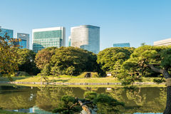 View of tokyo cityscape with park. Photo of View of tokyo cityscape with park Royalty Free Stock Photography