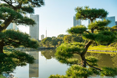 View of tokyo cityscape with park Royalty Free Stock Images