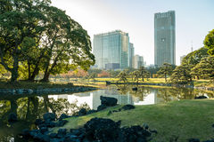 View of tokyo cityscape with park Stock Photography