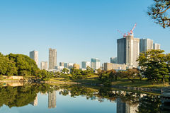 View of tokyo cityscape with park Royalty Free Stock Image