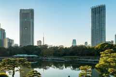 View of tokyo cityscape with park Royalty Free Stock Photography