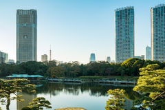 View of tokyo cityscape with park Stock Image