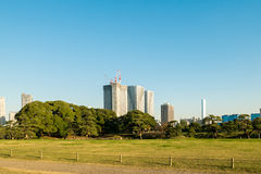 View of tokyo cityscape with park. Photo of View of tokyo cityscape with park Stock Photos