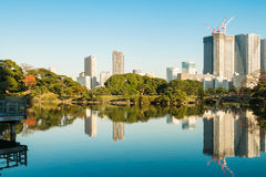 View of tokyo cityscape with park. Photo of View of tokyo cityscape with park Stock Photo