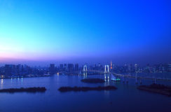 View of Tokyo downtown at night Royalty Free Stock Images