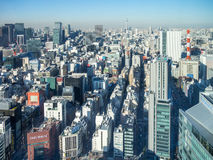 View of Tokyo, Japan Royalty Free Stock Images