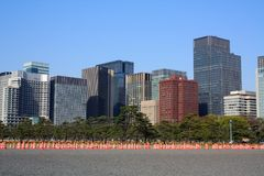 View of the Tokyo Skyline in the spring with blue skies Royalty Free Stock Photography