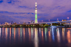 View of Tokyo skyline Royalty Free Stock Photo