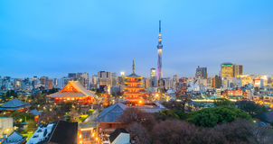 View of Tokyo skyline at twilight Royalty Free Stock Photo