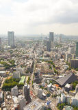 View of Tokyo from Tokyo Tower Stock Images