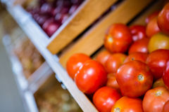 View of tomatoes Stock Photography