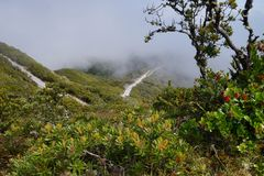 A view from the top of Baru Volcano, Panama to the valley with white fog in the distance Stock Image