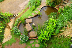 View from the top of beautiful tropical garden Stock Image