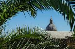 The view on top of the Catholic Church through the palm branches Royalty Free Stock Photography