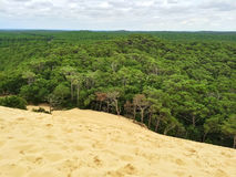 View from the top of Dune du Pilat, France. View from the top of Dune du Pilat. Dune of Pilat, the tallest sand dune in Europe, located in the Arcachon Bay area Royalty Free Stock Image