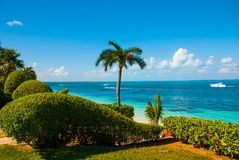 The view from the top Exotic Paradise. Tropical Resort. Caribbean sea Jetty near Cancun. Mexico beach tropical Stock Photo