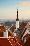 The view from the top of the old Tallinn Royalty Free Stock Photos