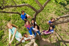 View from the top of teenagers sitting on tree Stock Image