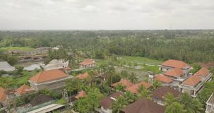 View from the top ubud indonesia. 4k video stock video footage