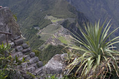 View from the top of Wine Picchu Royalty Free Stock Photo