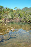 View at top of Zoe Falls on Hinchinbrook Island Stock Photography