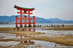 View of Torii gate in Miyajima, Japan Stock Photography