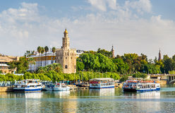 View of the Torre del Oro, a tower in Seville, Spain Stock Photography