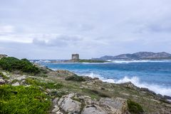 Aragonese tower on Stintino turquoise water and rocks, Sardinia,. A view of the the Torre della Pelosa tower and the Isola Piana island in the background in Royalty Free Stock Images