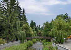 View toward river with bridge and highly varied plant Royalty Free Stock Image