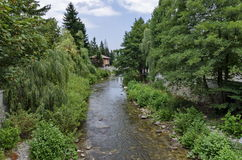 View toward river, rest-house and varied plant Royalty Free Stock Photo