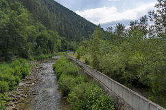 View toward river and varied plant Stock Image