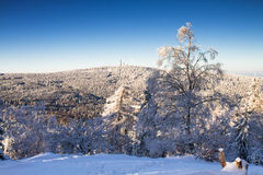 View towards the Feldberg in the winter Royalty Free Stock Images