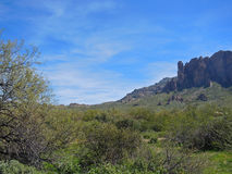 View Towards the Peaks at Lost Dutchman State Park Royalty Free Stock Image
