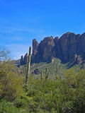 View Towards the Peaks at Lost Dutchman State Park Stock Photo