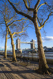 View of Tower Bridge along the Thames Path in London Royalty Free Stock Photo